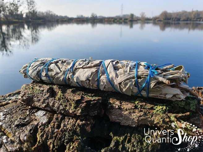 Mélange d'Aigle Bleu – Grand Bâton Chamanique dans la nature