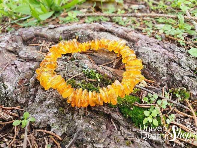 Bracelet ambre baltique jaune sur une écorce – Pierre de purification