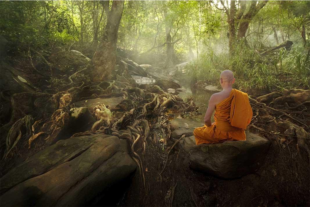 Bouddhiste en méditation dans une forêt