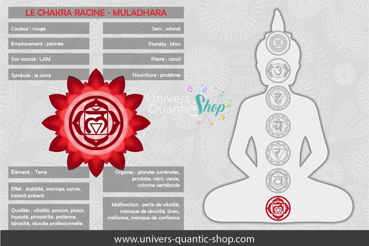 signification et informations sur le chakra racine - muladhara